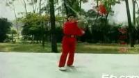 应美凤48式木兰剑演示