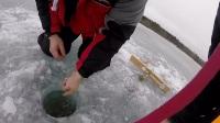 實拍俄羅斯兩名男子在厚厚的冰層上釣魚,在細小的洞裡拉出了長長的大魚!