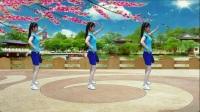 平淡广场舞《心痛DJ》步子舞 32步 编舞杨丽萍