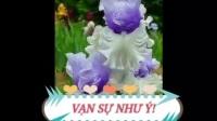 越南经典歌曲TamTuBangKhuang