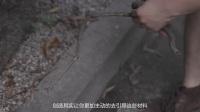 90后男孩用垃圾造艺术,成为中国超酷的拾荒者   喜号