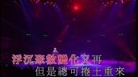 刘德华经典99红馆演唱会高清字幕版全集