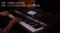 雅马哈PSR-S970实时演奏《在银色的月光下》-交响乐团音色包