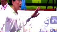 杨式太极拳40式 由中国武术七段沈善桃在中国第十三届运动会太极拳比赛决赛现场表演(天津)