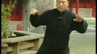 张东武陈式太极拳新架二路05_标清