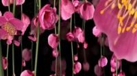 音画欣赏【凉凉】三生三世十里桃花 和声旋律