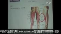 郭振存讲课视频-刃针浅筋膜松解技术治疗颈肩腰腿疼痛10集标清