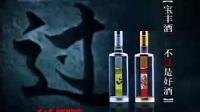 宝丰酒广告(20030104)
