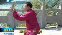 张东武 陈氏太极拳老架一路3