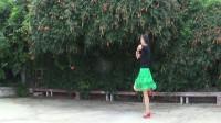 贞贞广场舞《草原的夏天》编舞:格格