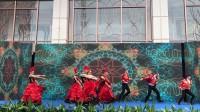 弗朗明哥 西班牙舞 外籍舞蹈  活力  动感