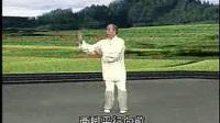 李德印32式太极拳_标清