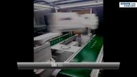 LNC 搬运机器人控制器应用