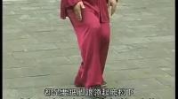 张东武 陈式太极拳老架一路74式完整教学