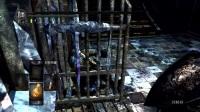 【傀儡咒】《黑暗之魂:受死版》全收集细节流程P3-16 公爵书库