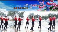 (原创)南嘉广场舞《万树繁花》