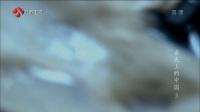 纪录片《舌尖上的中国》S1E3_转化的灵感【江苏卫视】高清版