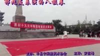 迎19大武术表演-郭兆友演练的八极拳