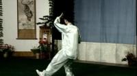 40式杨式太极拳 李德印讲解 陈思坦示范2  全套动作正面演练