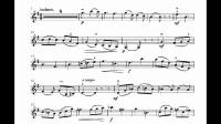 里丁格b小调小提琴协奏曲第二乐章