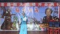 豫剧《必正与妙常》选段 秋江河下水悠悠  刘健(老县衙大戏楼演出)20171119