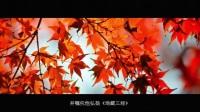 梦参老和尚纪录片《深山中的一盏明灯》01