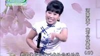 河南坠子《刘公传奇》47