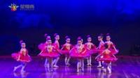 084号 少儿舞蹈《鲜花绽放》 星耀杯舞蹈大赛2017年12月