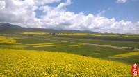 中国最黄的地方,太美了