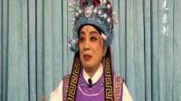 紫光录制·花木兰(别家)宋玉华·豫华豫剧团演出