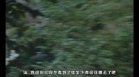 【生鱼片字幕】电子分光人第40话:吹动着怪兽的草笛曲