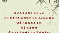 合肥龙健搏武道张欣晨实战功夫武术截拳道动作集锦_标清
