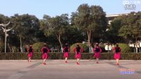 贺月秋广场舞《有那么一个地方 》 正背表演与动作分解_标清