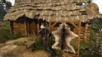 【老游新玩】巫师3狂猎02 伏击狮鹫【少帅实况都是坑 巫师3全剧情】