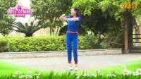杨丽萍广场舞《兄弟姐妹一家亲》活力健身操