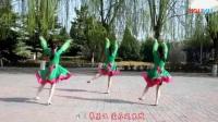 云裳广场舞《情在草原飞》