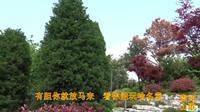 TSH视频田-贵州经典民间山歌-什么叫做亲又亲