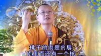 01集-大愿法师-药师法门健康随许法_标清