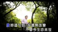 施志兴-一生的眼泪(ktv字幕)