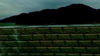 高州长坡水库