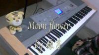 moon flower 夕颜 DGX640