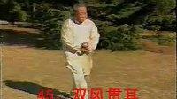 魏树人表演杨式老六路三 标清