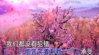 徐环-往后余生   KTV版
