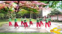 茂名春苑冰花花广场舞《种花》编舞:云裳;拍摄:苏生;制作:冰花花