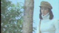 刘文正视频——白云长在天