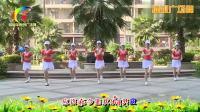 杨丽萍广场舞《不要让你的女人哭DJ》综合瘦身操 广场舞视频教学在线观看