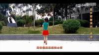0001.-《昨夜星辰》乔茜广场舞 双人舞教学视频舞曲