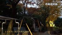 玄武家族1疯外练-第二期(2018年11月7日)腹回环、单杠腾身(对外开放)