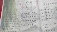 二年级语文下册 培优教学 咏柳 课文讲解