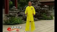 段位新教程杨式太极拳5段单练套路-_标清